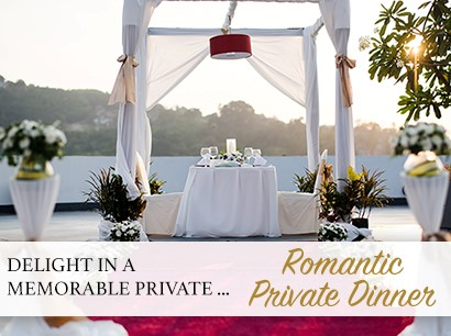 Romantic Private Dinner